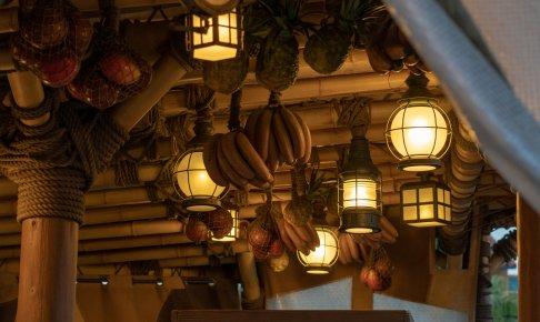 アドベンチャーランドの電球